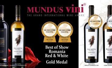 Cele mai bune vinuri romanesti 2021